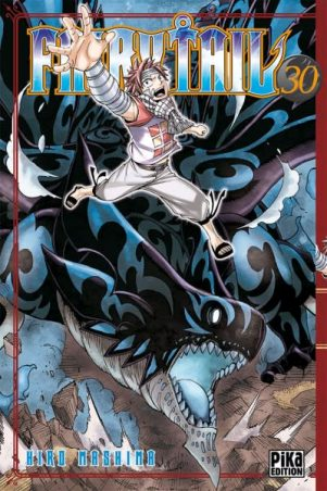 Fairy Tail - T.30   9782811610500