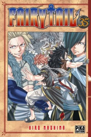 Fairy Tail - T.35   9782811613327