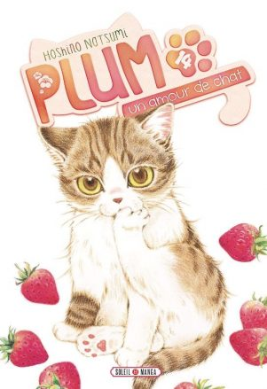 Plum un amour de chat - T.14 | 9782302064836