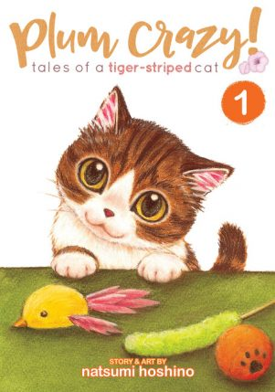 Plum crazy ! tales of a tiger-striped cat (EN) T.01 | 9781626925281